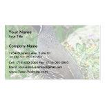 California quail business cards