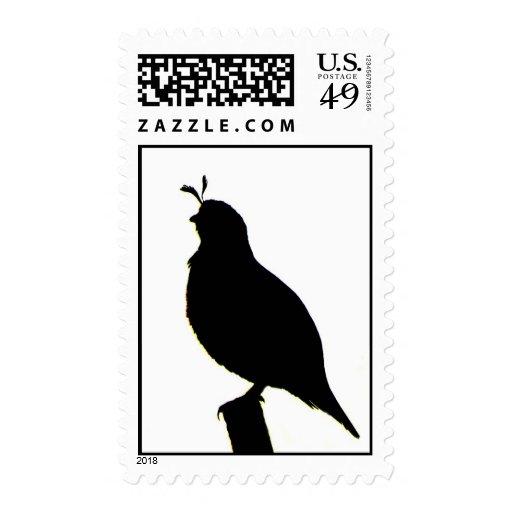 California Quail silhouette stamp