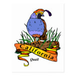 California Quali Postal