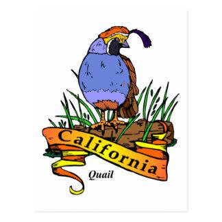 California Quali Tarjetas Postales