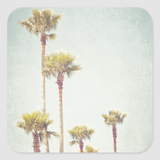 California que soña fotografía retra de la palmera pegatina cuadrada