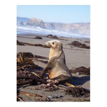Beach Themed California Red Seal Postcard