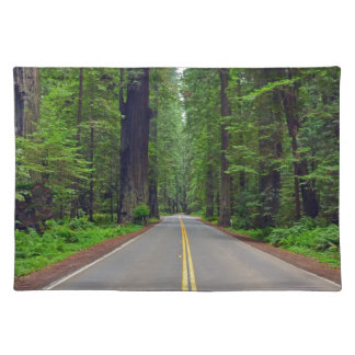 California redwood forest highway image cloth placemat