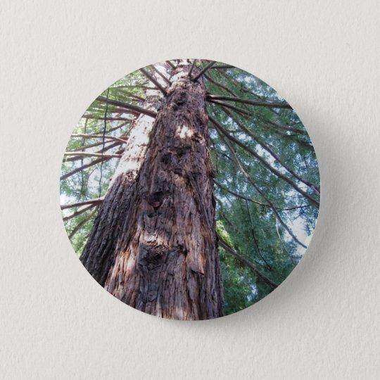 California Redwood Upshot Pinback Button