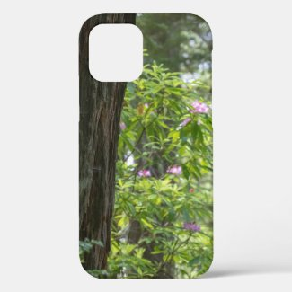 California Redwoods and Rhododendron iPhone 12 Case