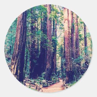 California Redwoods Classic Round Sticker