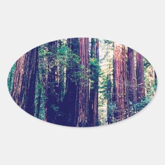 California Redwoods Oval Sticker