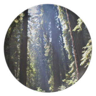 California Redwoods Plate