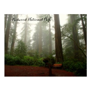 HKImages California Redwoods Postcard