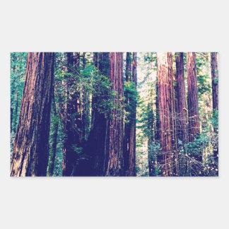 California Redwoods Rectangular Sticker