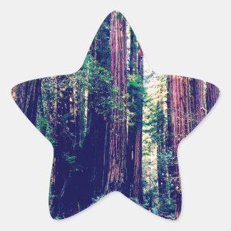 California Redwoods Star Sticker