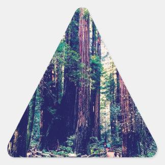 California Redwoods Triangle Sticker