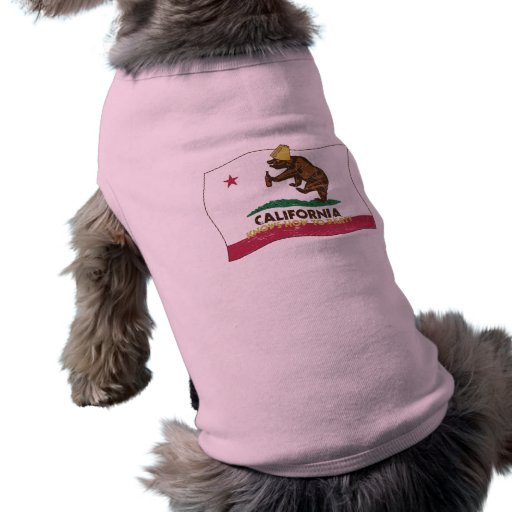 California sabe ir de fiesta el oso camisetas de mascota
