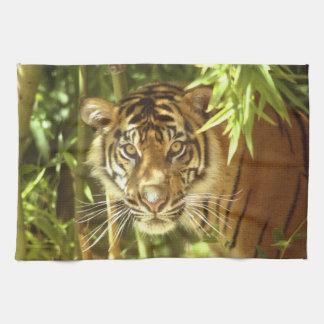 California, San Francisco Zoo, Sumatran Tiger Hand Towel