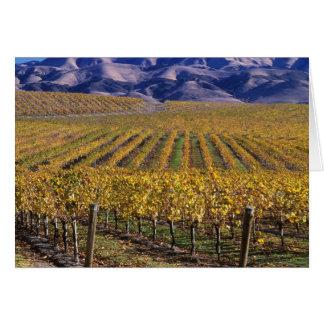 California, San Luis Obispo County, Edna Valley Greeting Cards