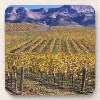 California, San Luis Obispo County, Edna Valley Beverage Coaster