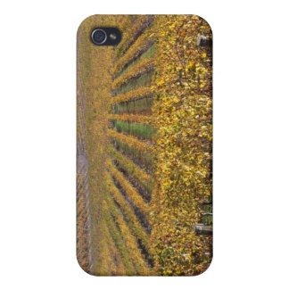 California, San Luis Obispo County, Edna Valley iPhone 4/4S Covers