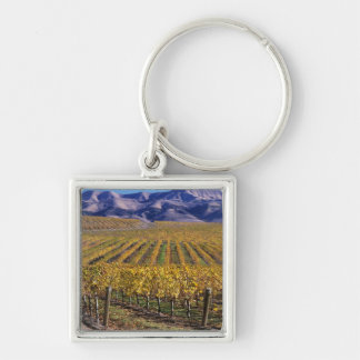 California, San Luis Obispo County, Edna Valley Key Chain