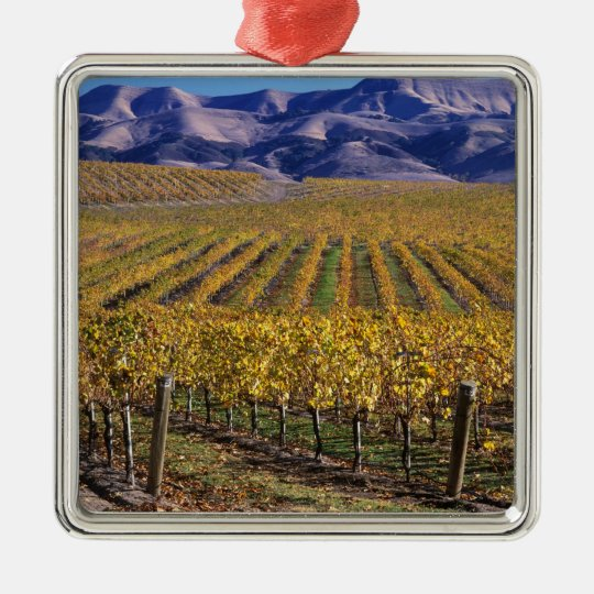 California, San Luis Obispo County, Edna Valley Metal Ornament