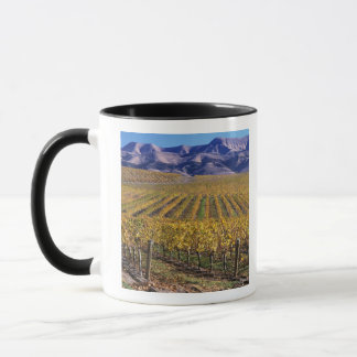 California, San Luis Obispo County, Edna Valley Mug