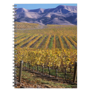 California, San Luis Obispo County, Edna Valley Spiral Notebooks