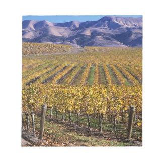 California, San Luis Obispo County, Edna Valley Memo Notepads