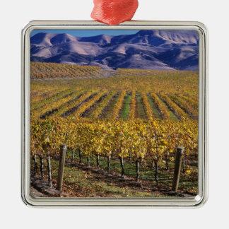 California, San Luis Obispo County, Edna Valley Christmas Ornament