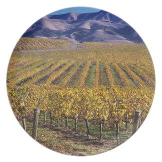 California, San Luis Obispo County, Edna Valley Dinner Plate
