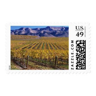 California, San Luis Obispo County, Edna Valley Stamp