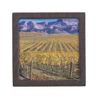 California, San Luis Obispo County, Edna Valley Premium Jewelry Boxes