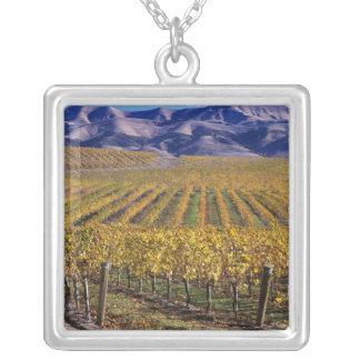California, San Luis Obispo County, Edna Valley Silver Plated Necklace