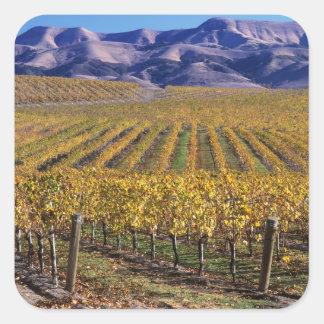 California, San Luis Obispo County, Edna Valley Stickers