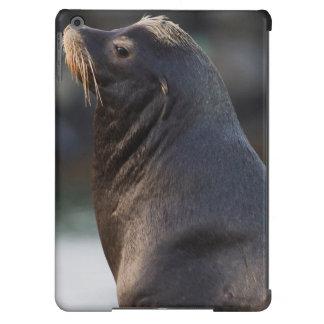 California Sea Lion 2 Case For iPad Air