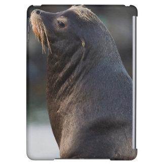 California Sea Lion 2 iPad Air Covers