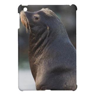 California Sea Lion 2 iPad Mini Case