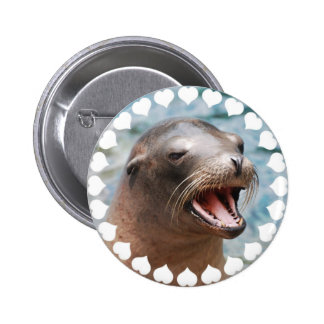 California Sea Lion Button