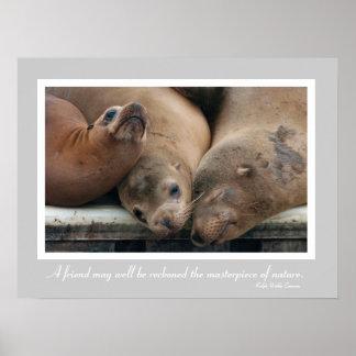 California Sea Lion Customizable Friendship Poster