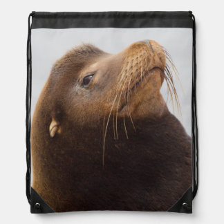 California Sea Lion Drawstring Bag