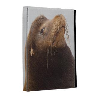 California Sea Lion iPad Folio Cover