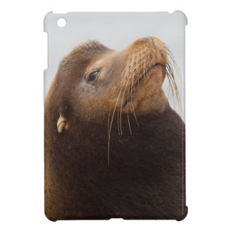 California Sea Lion iPad Mini Covers