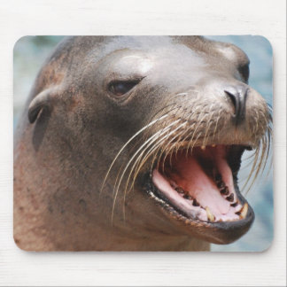 California Sea Lion Mouse Pad