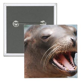 California Sea Lion Pin