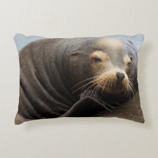 California Sea Lion Resting Accent Pillow