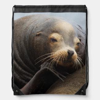 California Sea Lion Resting Drawstring Bag