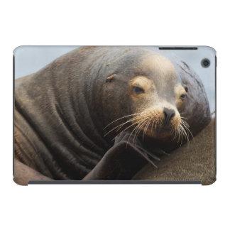California Sea Lion Resting iPad Mini Retina Covers