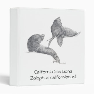 California Sea Lions 3 Ring Binder