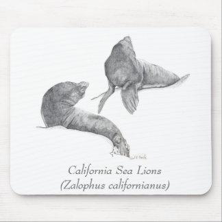 California Sea Lions Mousepad