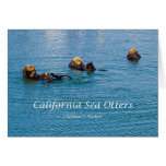 California Sea Otter California Products Greeting Cards
