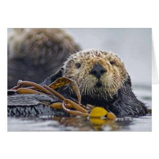 California Sea Otter Card