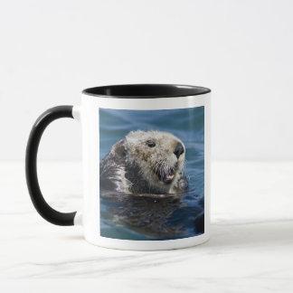 California Sea Otter Enhydra lutris) grooms 2 Mug